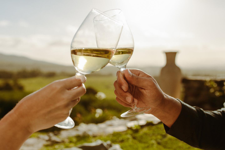 Weinverkostung Weißwein