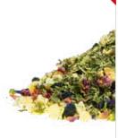 Kräuter-/Früchteteemischung Gojibeere Ingwer Aronia