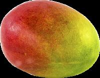 Crema di Frutta Mango (Mangoessig) 200 ml