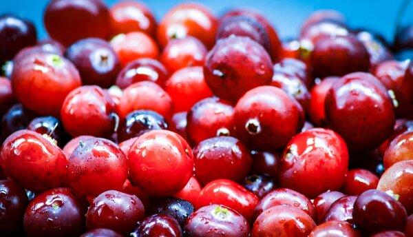 Crema Balsamica Cranberry Essig